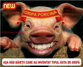 De la porc vine gripa