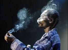 Ce fumuri are în cap Snoop Dobitoc