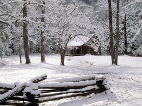 Prima ninsoare o ține toată lumea minte