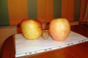 Cele două mere umflate cu E-uri par niște nave spațiale pe lîngă biata nucă
