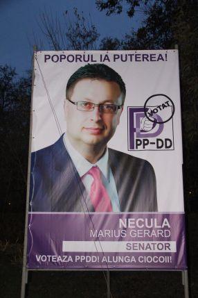 Marius Necula, cu poza de astă-vară, în culorile lui Dan Diaconescu