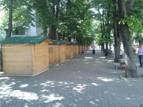 Căsuțele din lemn au fost amplasate pe aleea de la P-uri, căci miercuri începe Axis Libri