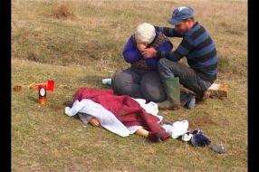 Copil de 4 ani omorît de cîini maidanezi în parc