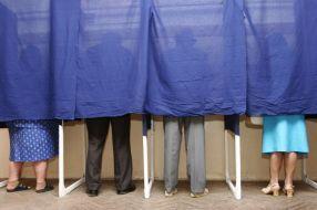 Miriapod pesedist exercitîndu-și obligația de a vota cu ăla mare de la București