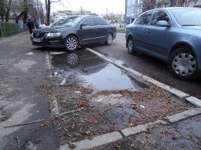 Alți șoferi au parcat la stradă, nu au avut curajul să se aventureze în baltă
