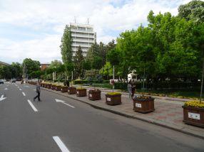 Ghiveciurile plantate de primarul Stan ca să ia fața turiștilor străini