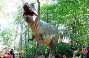 Dinouzaurii politici se țin cu dinții de funcții
