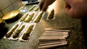 Pe piața drogurilor din Galați cannabisul este la mare căutare