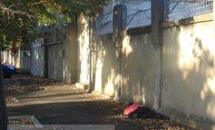 Mort în fața Penitenciarului Galați. Mort de beat, se înțelege (foto)