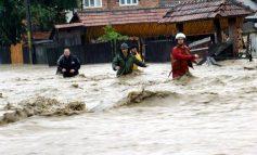 În Pechea, casele distruse de viitura din 2013 și apoi renovate au fost inundate și în 2016 (video)