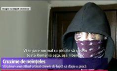 Vi se pare normal ca politicienii să stea în toată România asta, așa, liberi?