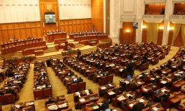 Atenție, vorbește porcul: marți, 20 decembrie este Ignatul dar și prima ședință a noului Parlament
