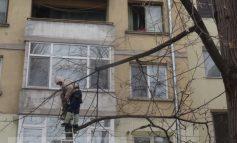Scandal în centrul Galațiului din cauza unui copac tăiat legal (video)
