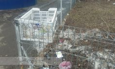 Gălățenii fac lucruri trăsnite: improvizează tomberoane și aruncă gunoi în cișmele