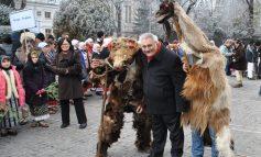 Un biped pe nume Bacalbașa s-a urcat în copacul din Parlament ca să facă mișto de colegii săi, babuinii din opoziție!