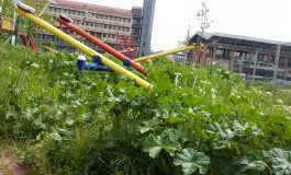 Ne batem joc de bălăriile orașului: într-un lan de buruieni a apărut un loc de joacă pentru copii