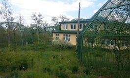 Deși a costat cît vila unui maimuțoi din politică, cușca maimuțelor de la Zoo Galați este goală