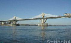 Vești bune pentru bacul de la Galați și Brăila: licitația pentru podul peste Dunăre ar putea fi anulată