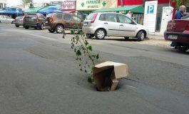 În trafic, ca la mort: au pus flori la groapa infrastructurii gălățene