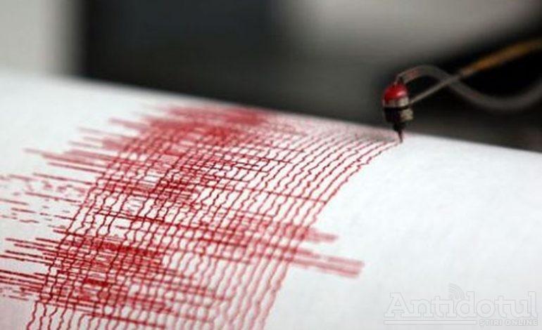 Cutremurul de miercuri a avut epicentrul în comuna Vînători