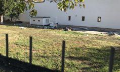 Pucheanu face parcare pentru primărie în spate la PSD. Că cea din noua primărie a fost deja amanetată