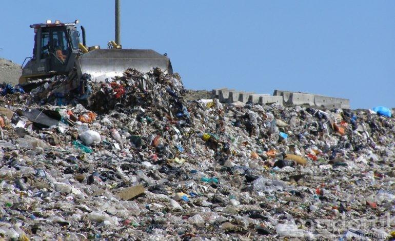 Bacalbașa și Fotea sînt dovada vie că atunci cînd spui gunoi, te duci imediat cu gîndul la PSD