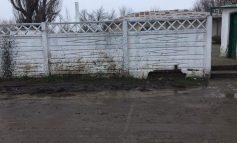 Prea ca la țară: copiii unei grădinițe din orașul Galați se bălăcesc în noroi