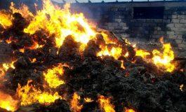 100 de viței au ars într-un incendiu izbucnit la o fermă situată între Brăila și Galați