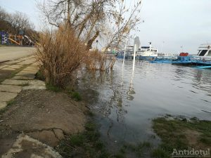 Dunărea a ajuns la cota de inundație