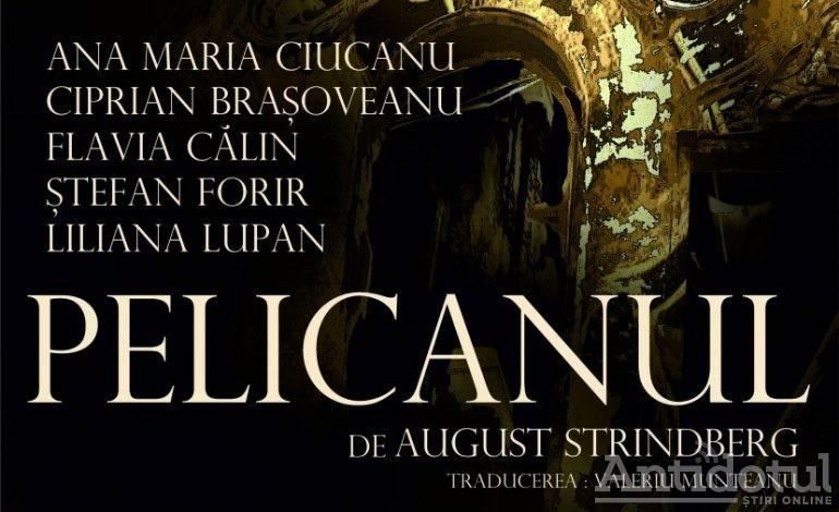 Timp liber: În acest uichend, la Teatrul Dramatic puteți vedea: Pelicanul, Năpasta sau Îmblânzirea Scorpiei