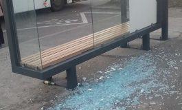 Aventuri zoo: o creatură a distrus o stație de autobuz