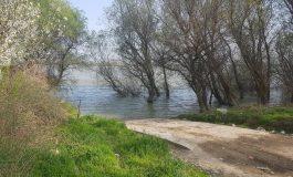 Portul de ambarcațiuni s-a molipsit de la Plaja Dunărea