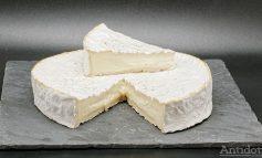 Experiment pe pielea gălățenilor: ce se întâmplă când te dai pe buze cu ruj expirat și apoi mănânci brânză stricată?