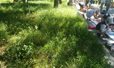 În Tecuci, îngrijirea boscheților este considerată cultură și primește jumătate din buget