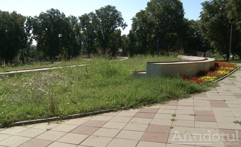 VIDEO/ Și lupul de la stână mănâncă semințe. Doi paznici au fost prinși în timp ce scuipau coji în parcul Rizer