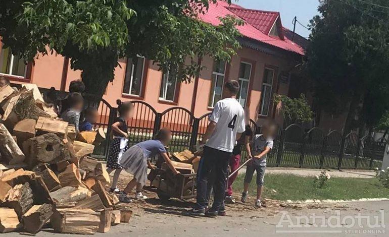 Voluntariat sau muncă cu forţa? Elevii dintr-o comună brăileană, cărăuşi de lemne