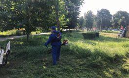 Gospodărire Urbană caută 30 de tăietori de iarbă. Verde!