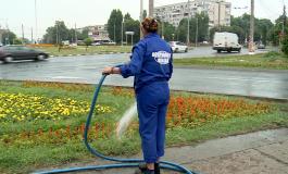 VIDEO/Ploaia de luni a udat aspersoarele care irigă gazonul şi i-a făcut ciuciulete pe salariaţii Primăriei care stropeau cu furtunul