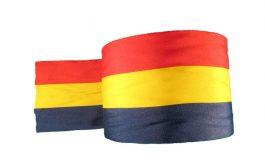Repede, un set de panglici tricolore pentru restul de 2 ani de mandat ai primarului Ionuț Pucheanu