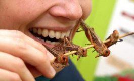 VIDEO/ Autentic oriental: în meniul unui restaurant de la mall a apărut o insectă