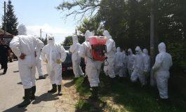 Revoltă la Brăila: locuitorii unui sat în care a fost descoperită pesta porcină i-au alungat pe veterinarii veniți să eutanasieze porcii