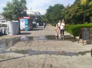 FOTO-VIDEO/ Bătaie de joc: faleza din Galați miroase a rahat, este murdară și a fost invadată de câini fără stăpân