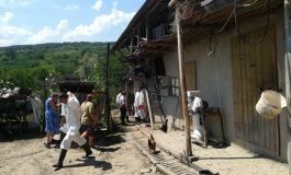 Comedie cu pesta porcină: autoritățile încearcă de câteva zile să confirme prezența virusului într-un sat fără porci