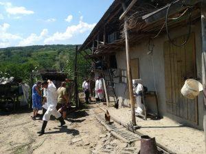 Localnicii din Suceveni au rămas fără porci