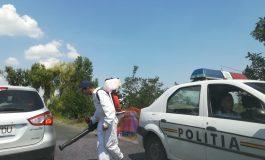 Restricții de circulație pentru porcii din orașul Galați