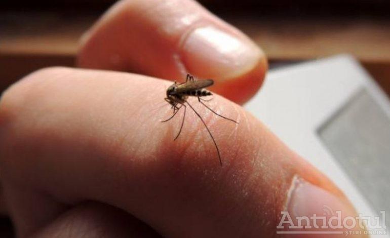 Asta ne mai lipsea: virusul West Nile a provocat decesul unui bărbat