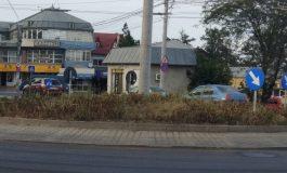 Mai rău ca pe un maidan din lumea a treia: plantele de la intrarea în Galați au început să putrezească