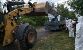 Veste proastă pentru godacii cu buletin de oraș: pesta porcină africană a intrat în municipiul Galați