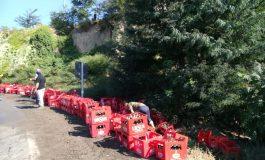Incident auto-bahic la Cosmești, în județul Galați: sute de sticle de bere au căzut dintr-un tir