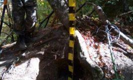 Descoperire incredibilă înVrancea! Scheletul unui soldat român din Primul Război Mondial  găsit în pădurea de la Soveja